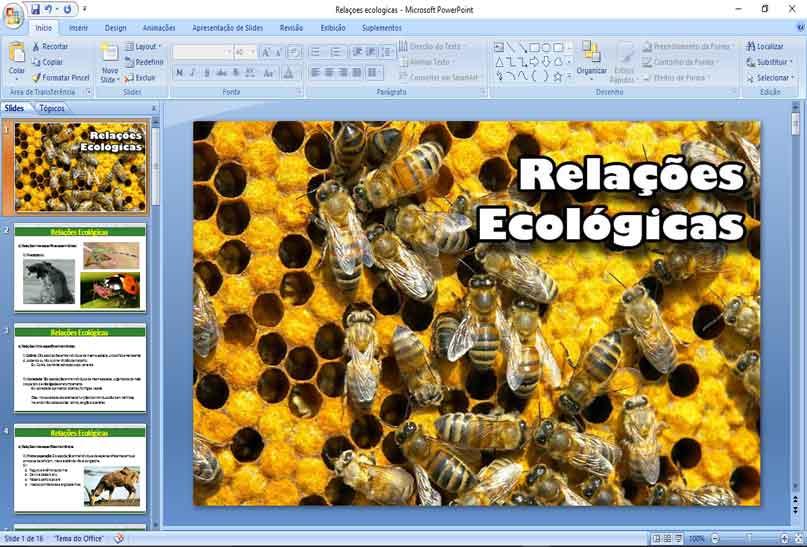 Slides de Ecologia