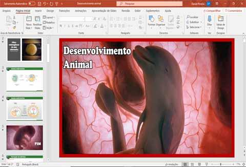 Slides de Embriologia